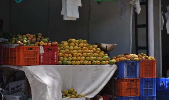 Mangoes or mangos in Bangalore