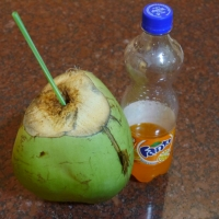 Tender Coconut: A Magic Drink