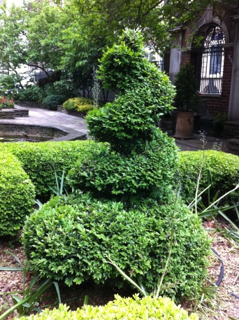 topiary at Drapers Hall