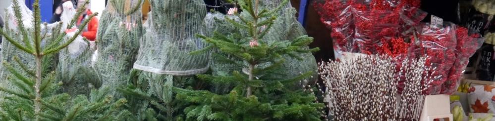 Marylebone High Street Christmas trees for sale