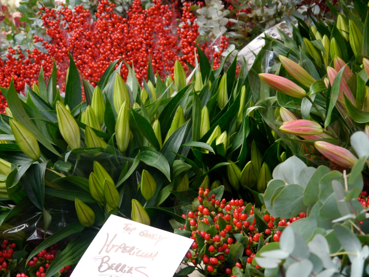 Christmas Flowers at Columbia Road