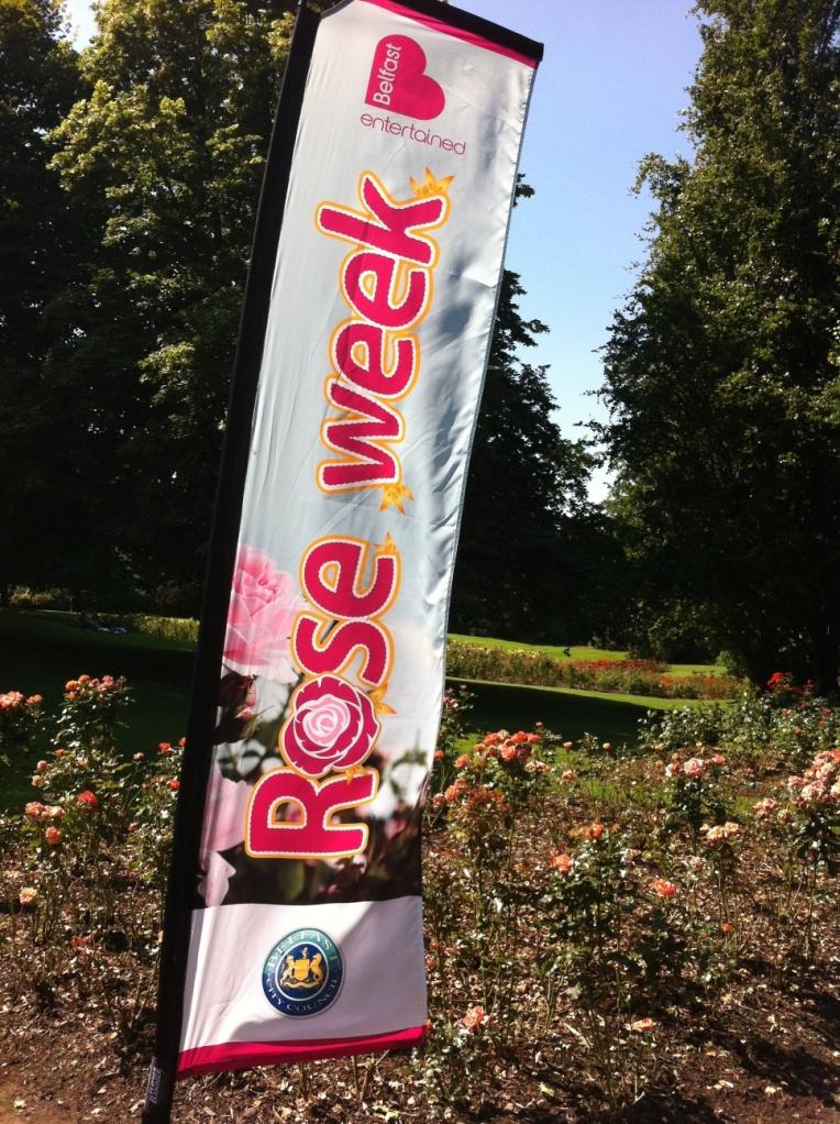 Rose Week Banner