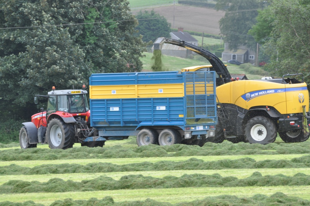 silage into trailer