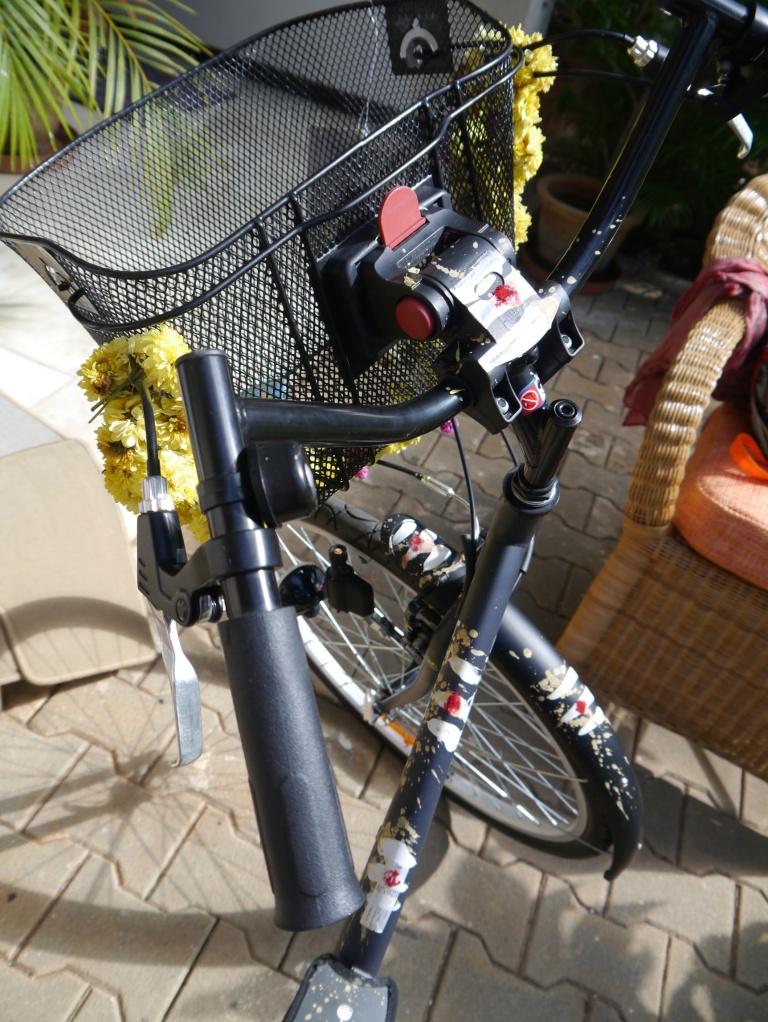 Dussehra - bike blessing