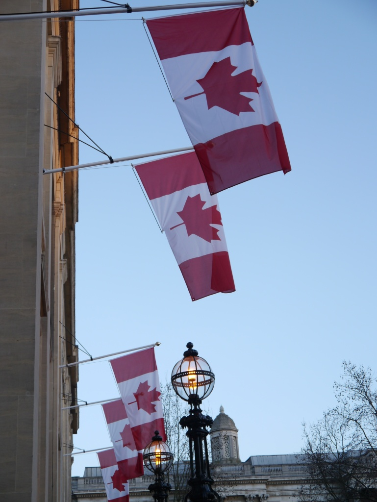 maple leaf flags