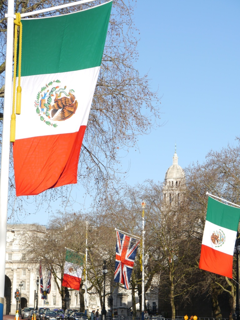 mexican state visit flags