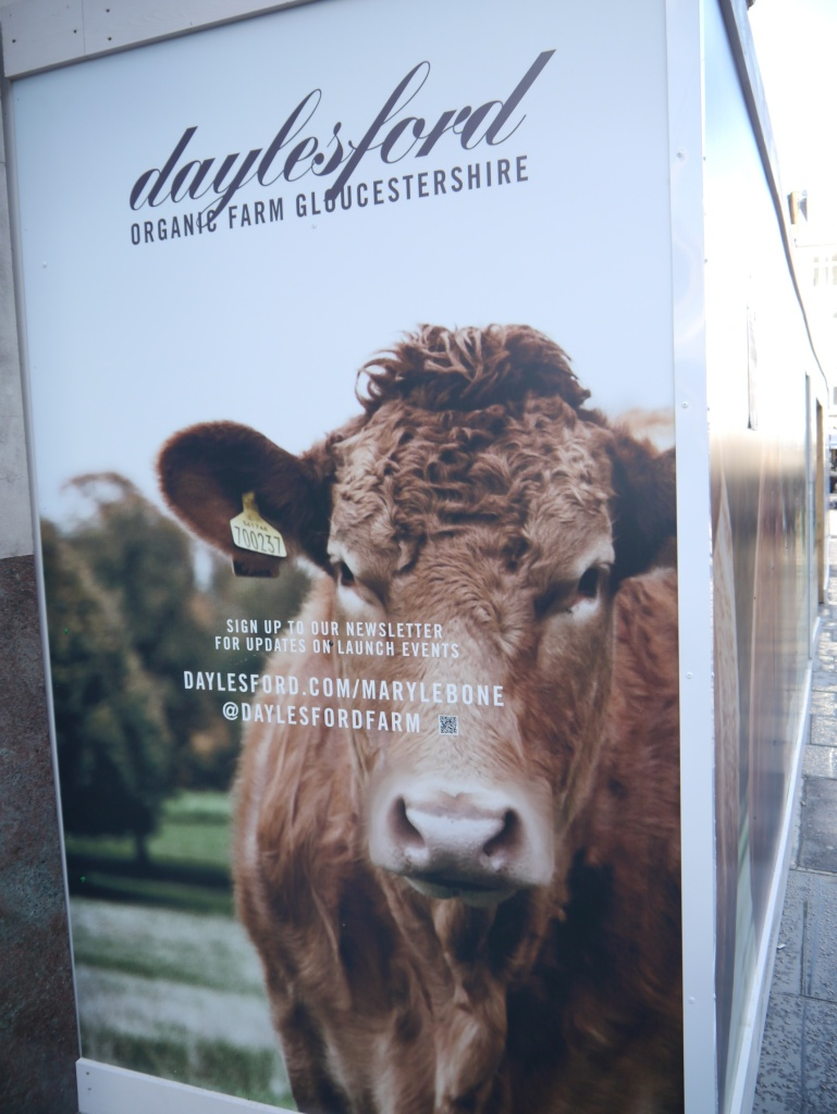Daylesford sign cow