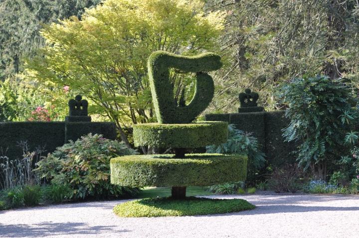 Mount Stewart harp topiary