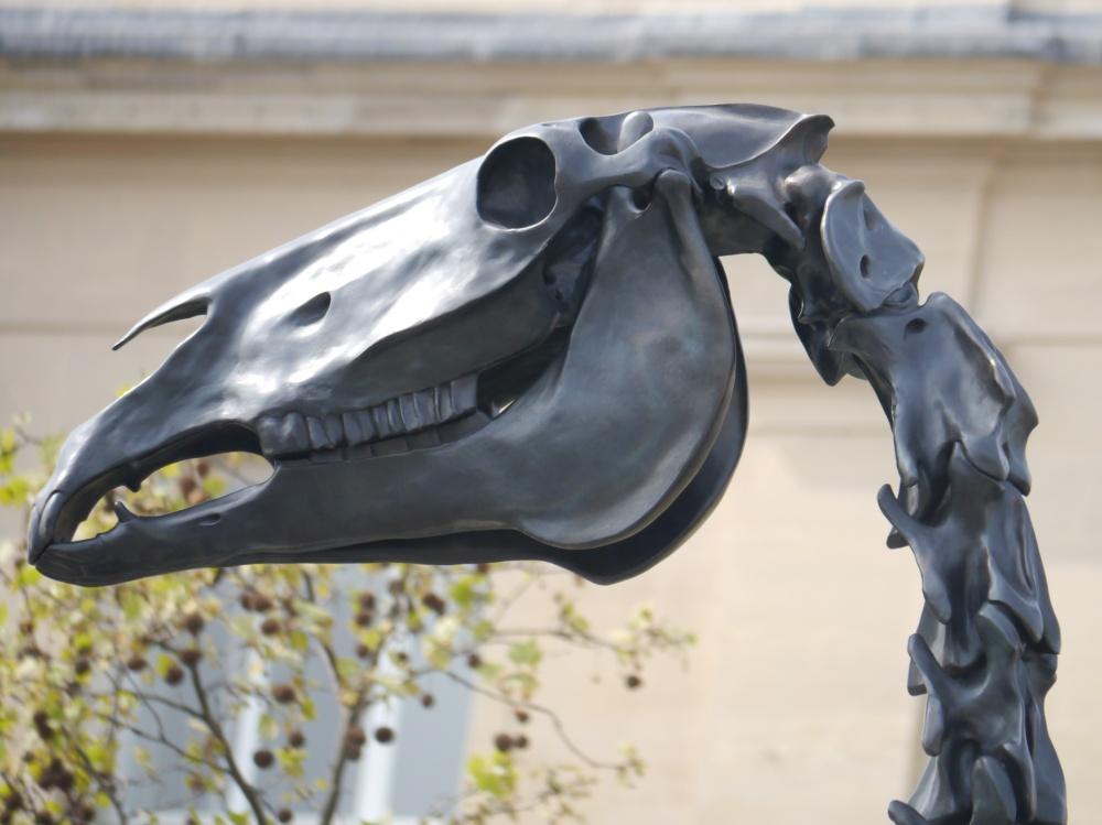 Trafalgar Square- Head