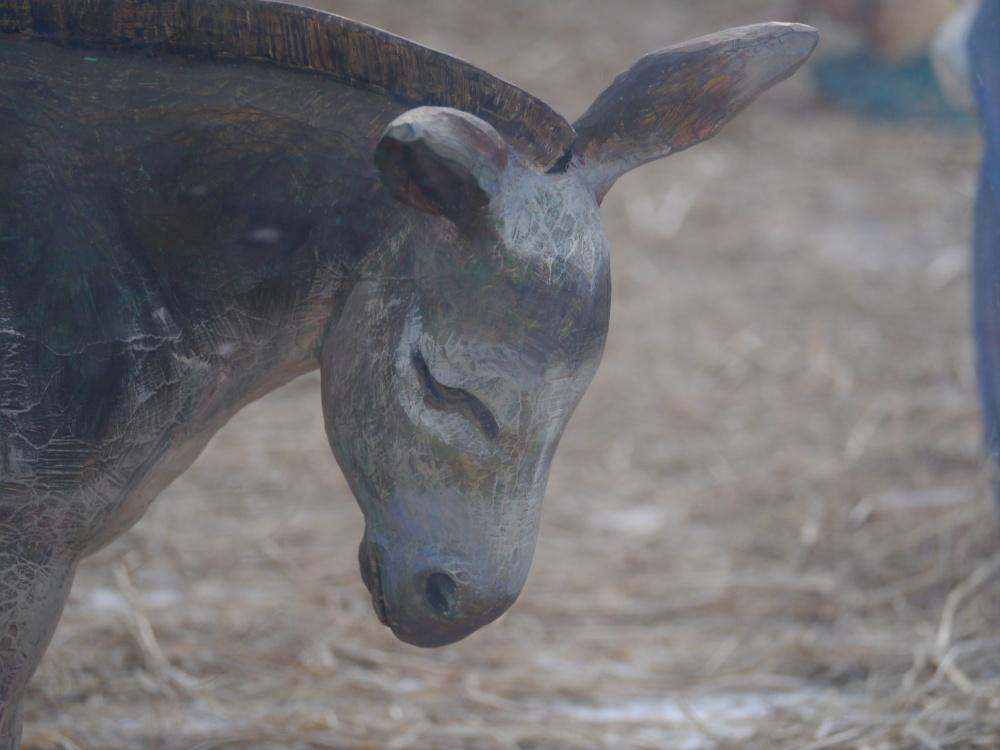 Trafalgar Sq crib donkey (1)