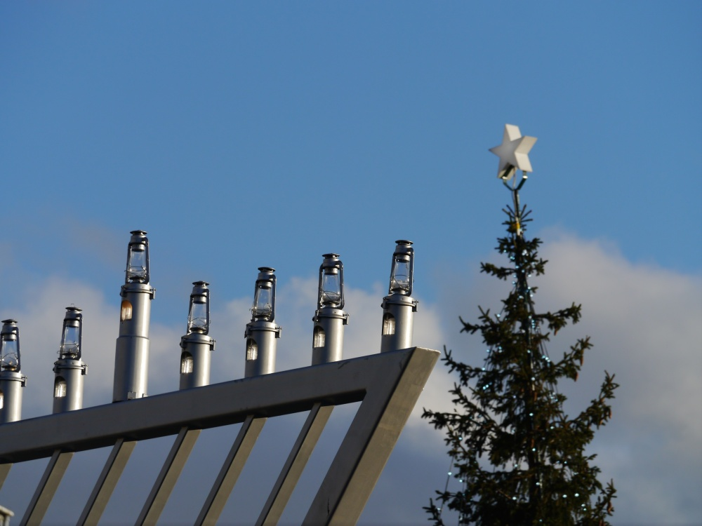 Trafalgar Sq Tree & Menorah (1)
