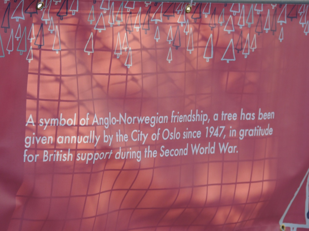 Trafalgar Sq tree sign (1)