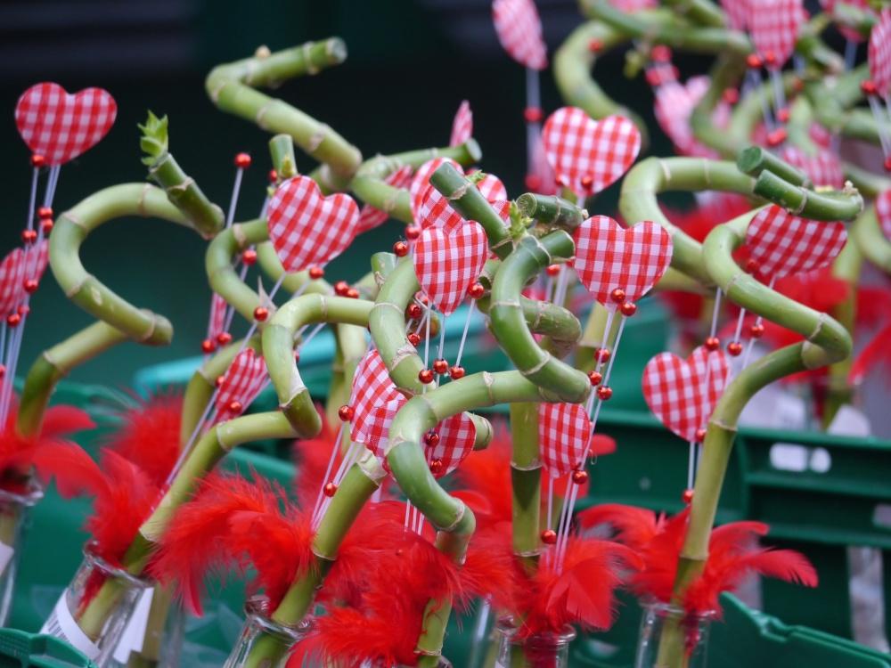 bamboo valentine